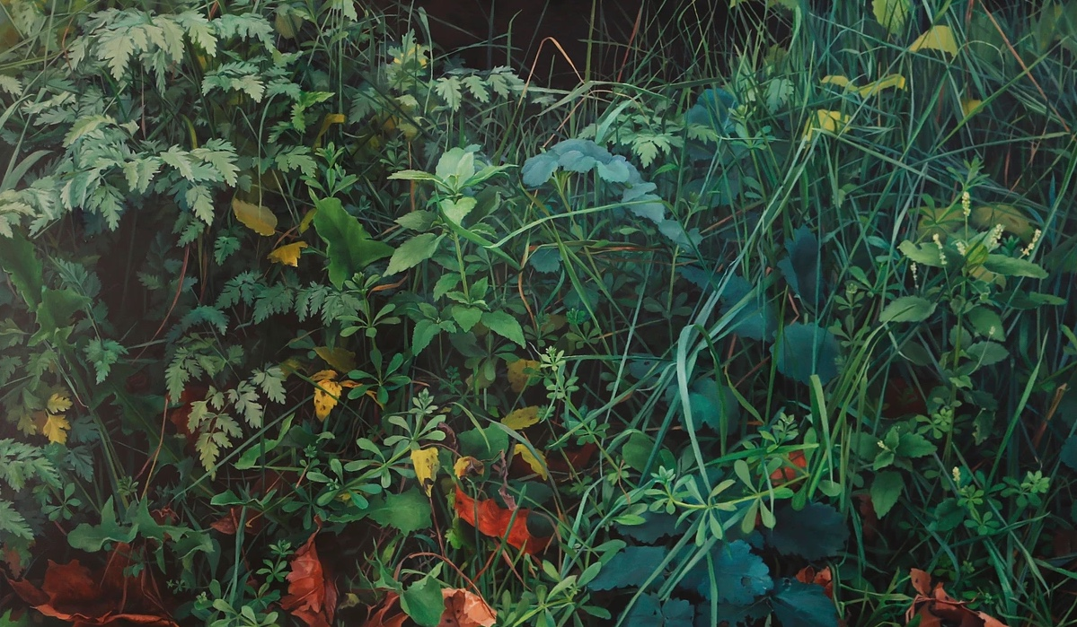 herbes-gd